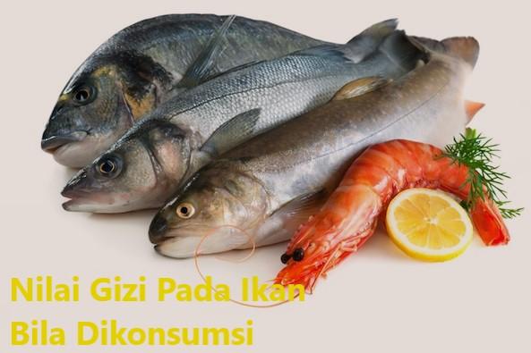 Nilai Gizi Pada Ikan Bila Dikonsumsi